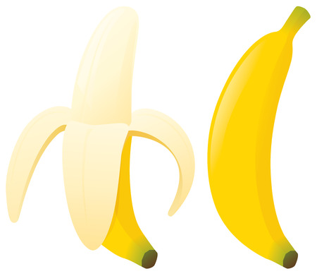 unzipped: Bananas zipped and unzipped. Illustration