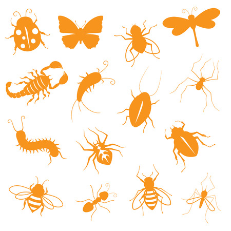 creepy crawly: Insect icons - gradient free and easy to change colour. Illustration