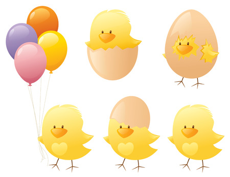 cracked egg: Little yellow chicks.