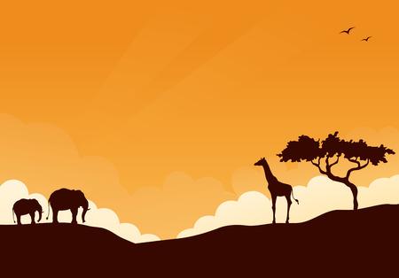 アフリカのサファリの背景。  イラスト・ベクター素材