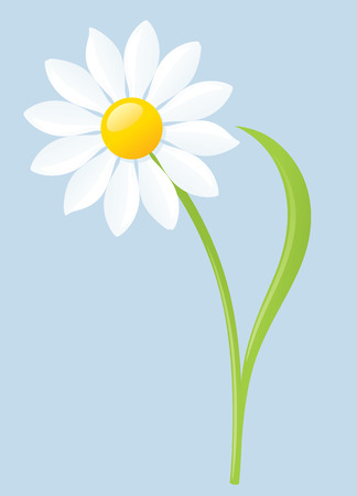 Single white daisy on blue background. Illustration