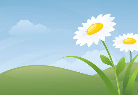 yellow hills: Daisies and a spring day background.