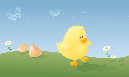 hatched: Newly hatched chick taking a wobbly first walk on a beautiful spring day.
