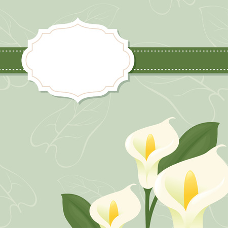 lily flower: Blank invitation stationery with lilies. Illustration