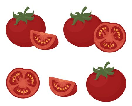 tomato slice: Juicy red tomatoes in slices and wedges. Illustration