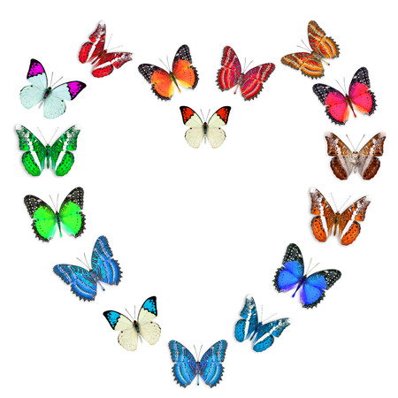 sweet heart: Mix of Beautiful Butterflies in the shape of Valentines sweet heart Stock Photo