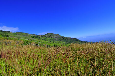 lanscape: A great lanscape of grass and mountain with blue sky Stock Photo