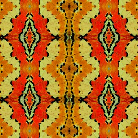 chrysope: Belle Contexte de chrysope papillon ailes texture Banque d'images