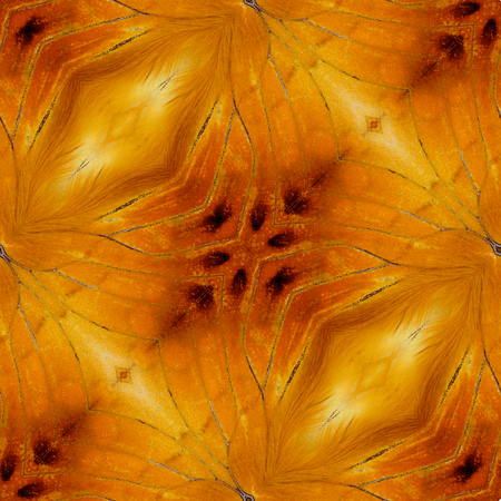 rajah: Hermoso patr�n de fondo dise�ado desde Rajah malayo mariposa alas textura