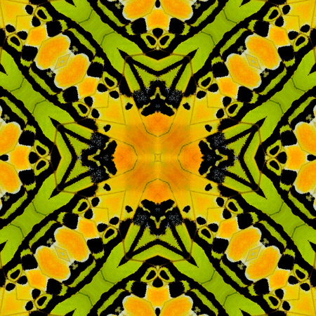 biblis: Orange and Green Pattern Background for texture design Stock Photo