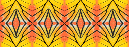 Beautiful Orange and Yellow pattern background texture made from Painted Jezebel butterfly wings photo
