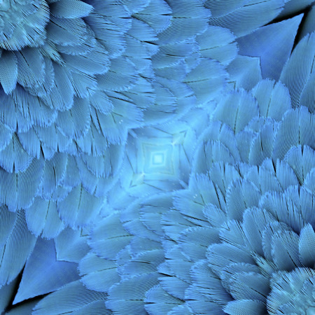 Close up of Blue and Gold Macaw bird feathers in nice patterns Stock Photo