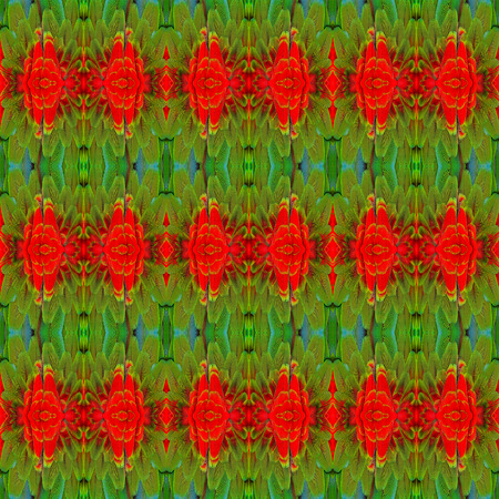 bird feathers: Seamless Background Pattern made from Red ang Green Macaw bird feathers