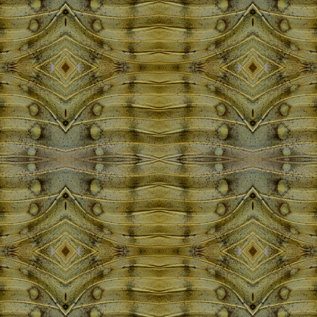 beautifu: Beautifu of Seamless Brownl Background Pattern made of Great Marquis butterfly wing skin texture