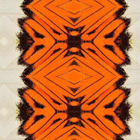 Beautiful orange and white background pattern made of orange tip butterflys wing skin texture photo