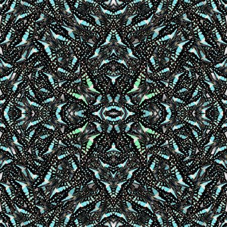green jay: Sin costuras hecho de com�n Jay la mariposa verde salvaje consolited en la textura de fondo