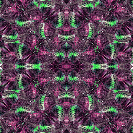 archduke: Seamless of purple and green background pattern made of black-tip archduke butterflies