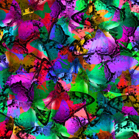 vagrant: The most beautiful background texture made of Vagrant butterflies in various fancy colors Stock Photo