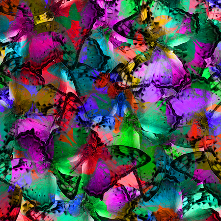 vagrant: Exotic multicolor background texture made of Vagrant butterflies in various fancy colors