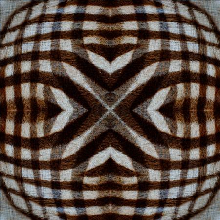 super cross: Lo mejor de la trama de fondo de camuflaje súper transversal de cebra textura de la piel