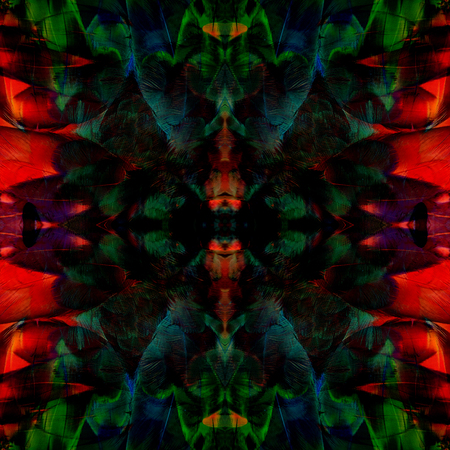 architech: Exotic dark green and red background texture made from Scarlet Macaw bird feathers Stock Photo