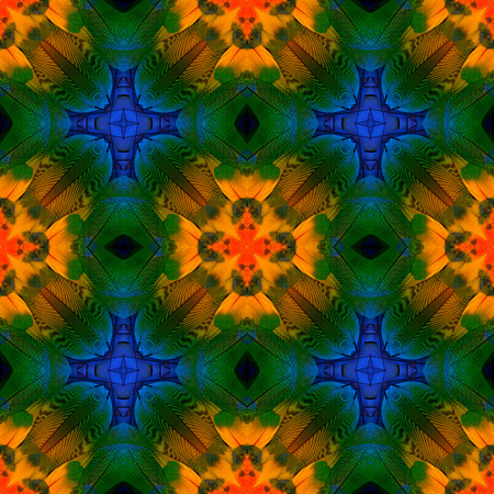 bird feathers: Very colorful background pattern made from macaw bird feathers