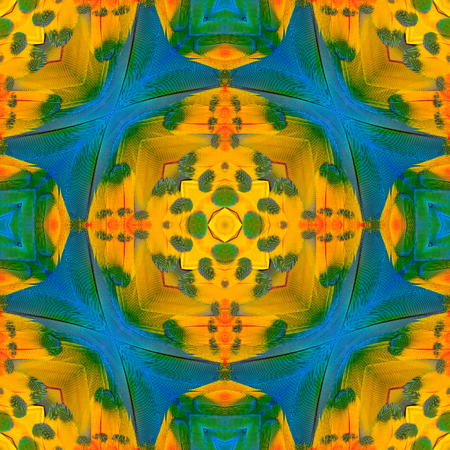 bird feathers: Seamless Blue and Yellow background pattern made from blue and gold macaw bird feathers