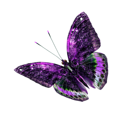 green butterfly: Beautiful purple and green flying butterfly isolated on white background