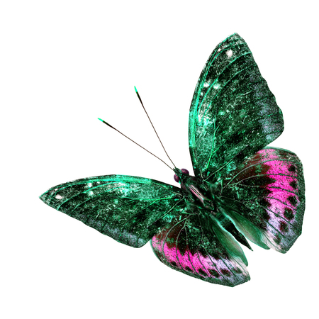 archduke: Beautiful green and pink flying butterfly isolated on white background