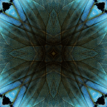 wing span: Exotic crossing lines on grey and pale blue background texture made of Cambodian Junglequeen buttefly wing skin