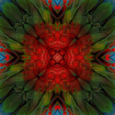 fascinate: Symatic red green to blue background made of Green-winged Macaw feather, beautiful texture bird wing Stock Photo