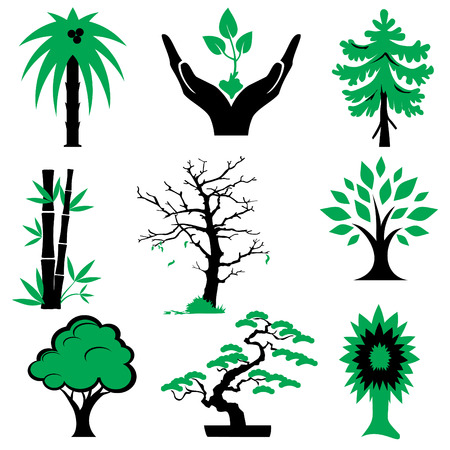 conifer: set of silhouette icons of trees and plants