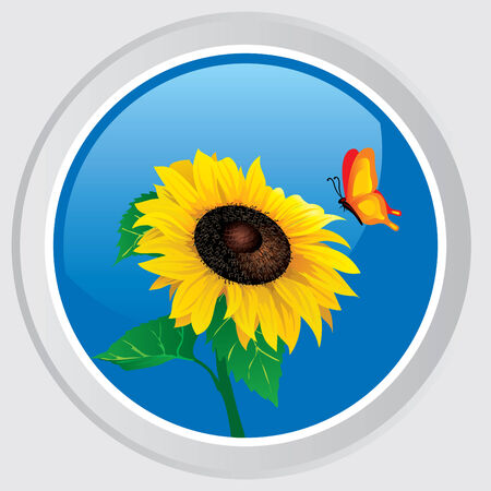 Vector icon. Button with the flower sunflower and butterfly Vector