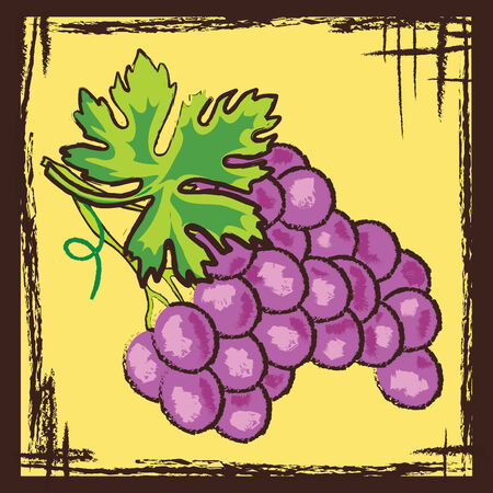 purple grapes: stylized antique vector picture of grapes