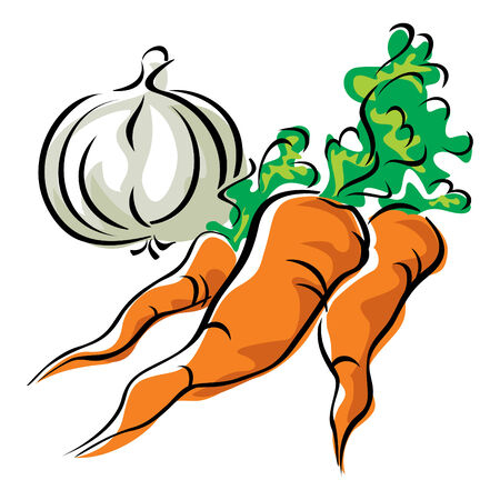 images of three  carrots and garlic Vector