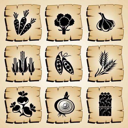 zwiebeln: gesetzt Vektorsymbol Lebensmittel und Gem�se Illustration