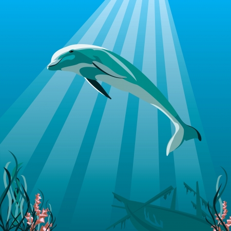 image of a dolphin swimming in the ocean Stock Vector - 17581862