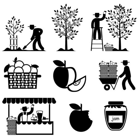 basket icon: set vector icons of apple agriculture and  processing Illustration