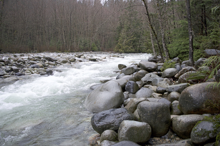 A river in British Columbia in the Spring.