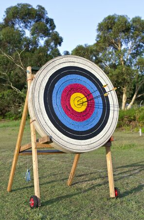 Archery shooting target standing on the grass field photo
