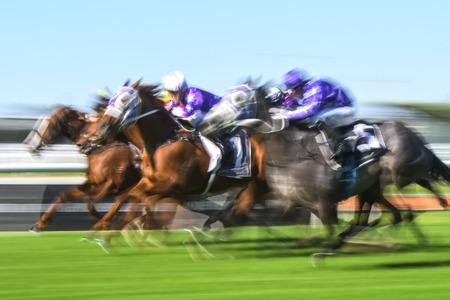 Motion offuscata immagine di azione di corse di cavalli