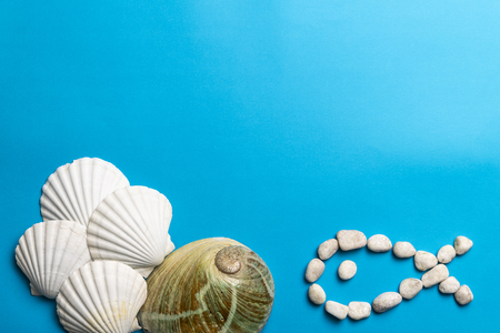 Close up photo of white shells, stones and abalone shell isolated on blue background, copy space Stock Photo