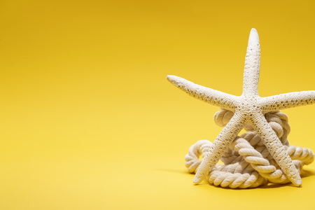 Summer time concept with starfish and rope on a plain yellow background