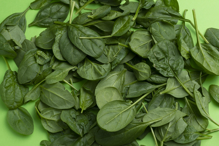 Group of babe spinach leaves isolated on green background