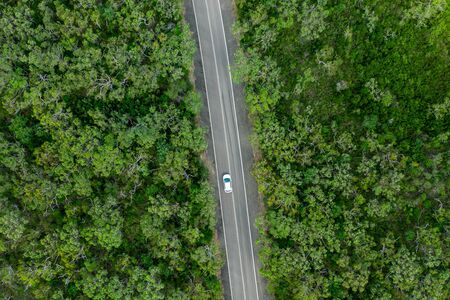 Aerial view of green summer forest with a road and car. Captured from above with a drone in Australia.