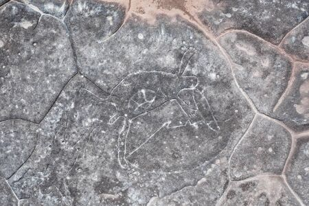 Aboriginal rock carving art in Ku-ring-gai Chase, Sydney, Australia