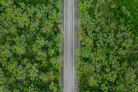 Aerial view of green summer forest with a road. Captured from above with a drone in Australia. 스톡 콘텐츠