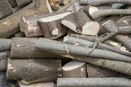 Close up of a pile of wooden logs, chopped into smaller pieces, timber logs. 스톡 콘텐츠