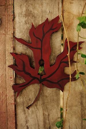 Autumn Leaf Keyhole on Wooden Door