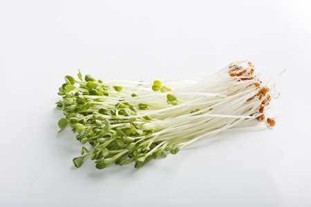 Bean Sprouts Stock Photo - 22092633